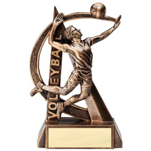 Action Male Volleyball Resin