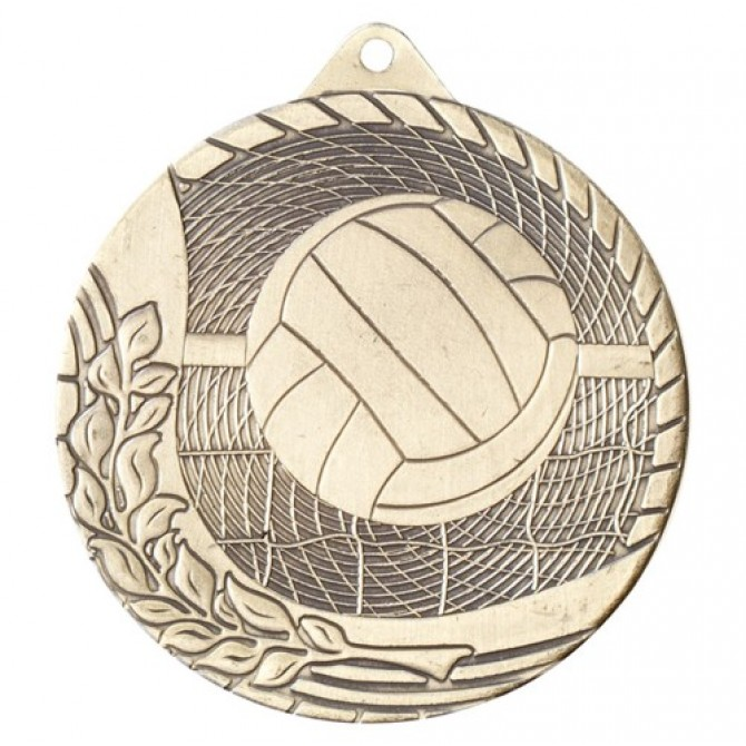 Modern Series Volleyball Medal